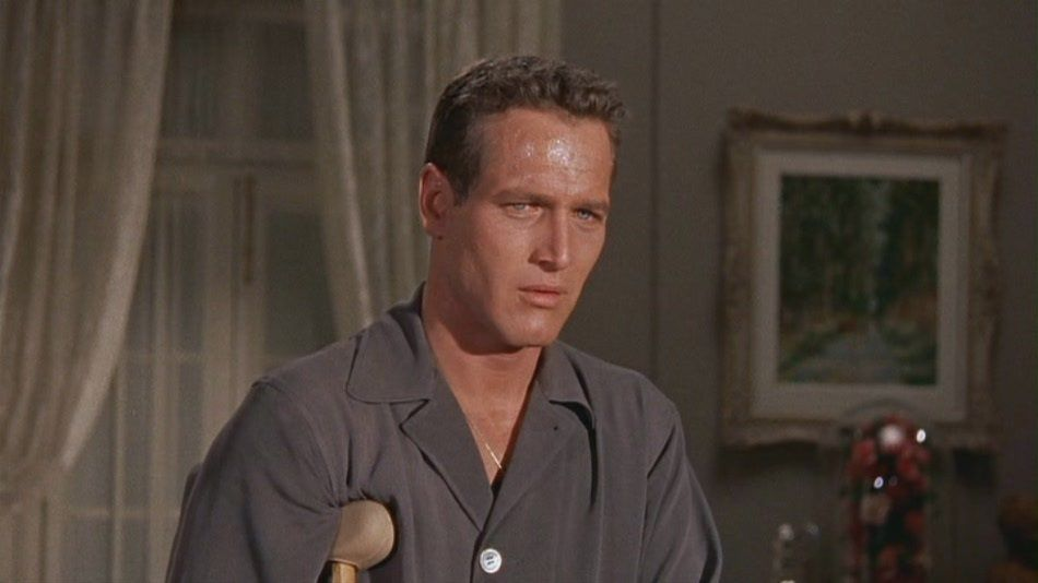 paul newman in cat on a hot tin roof paul newman  cat on a hot tin roof essay