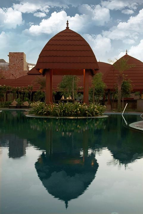 A #unique attribute of brown domed elegance finds reflection in the still #pool water as well as a sunny sky #disposition.
