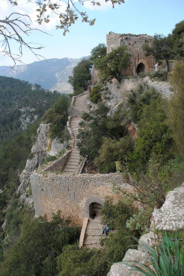 Excursion To Castell D Alaro Mallorca Isla De Mallorca Lugares De España Palma De Mallorca