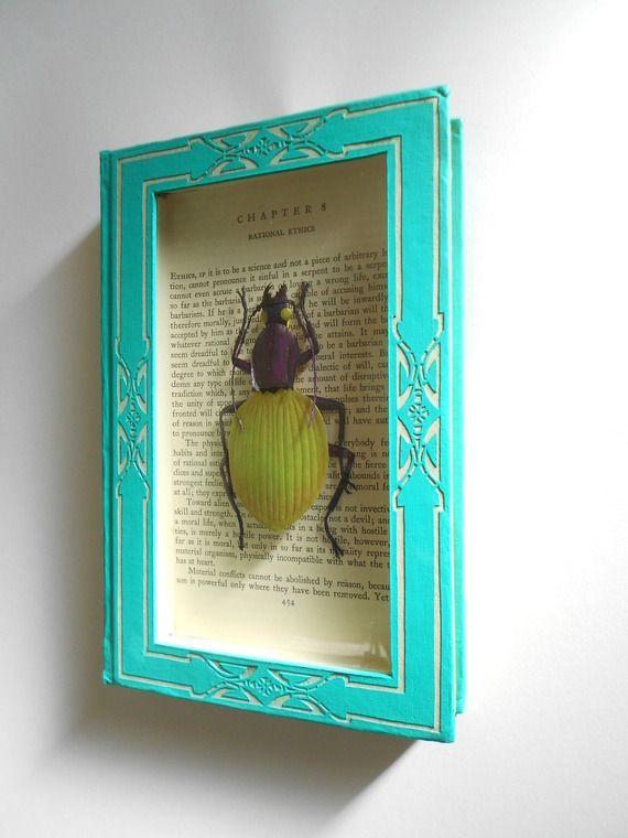 """Décoration murale livre """"Mon petit scarabée"""