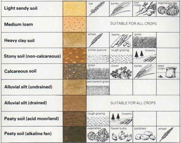 Chart Of Soils And Crops Types Soil Agriculture Garden Design