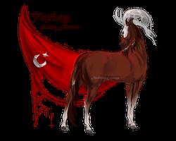 Horse Hetalia: Turkey by MUSONART