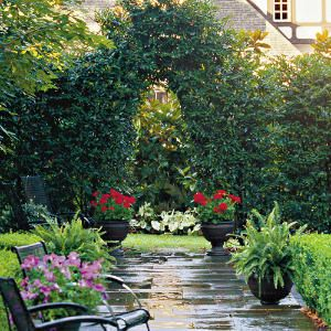 Ideas for Living Screens with plants   // Great Gardens & Ideas //