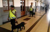 Empat Anjing Pelacak Tiba di Stasiun Cirebon