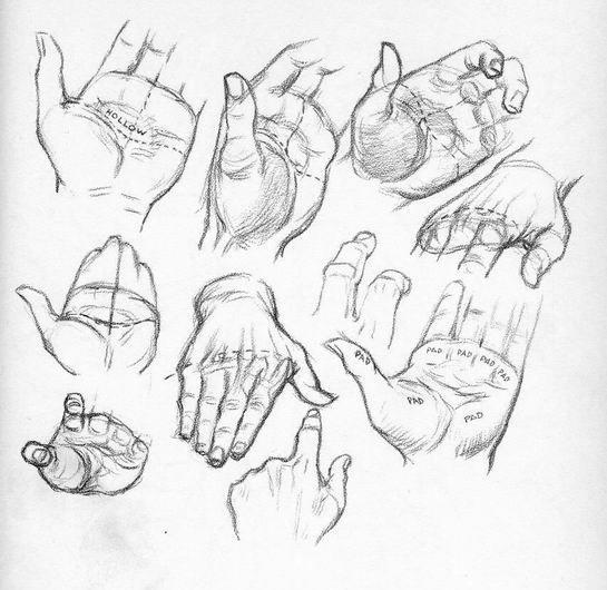 Güzel Sanatlar Sanat Formları El çizimleri El Eskizleri çizim