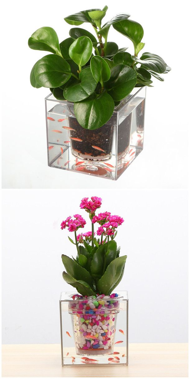Desktop Balcony Decor Transparent Flower Planter Fish Tank | Loving