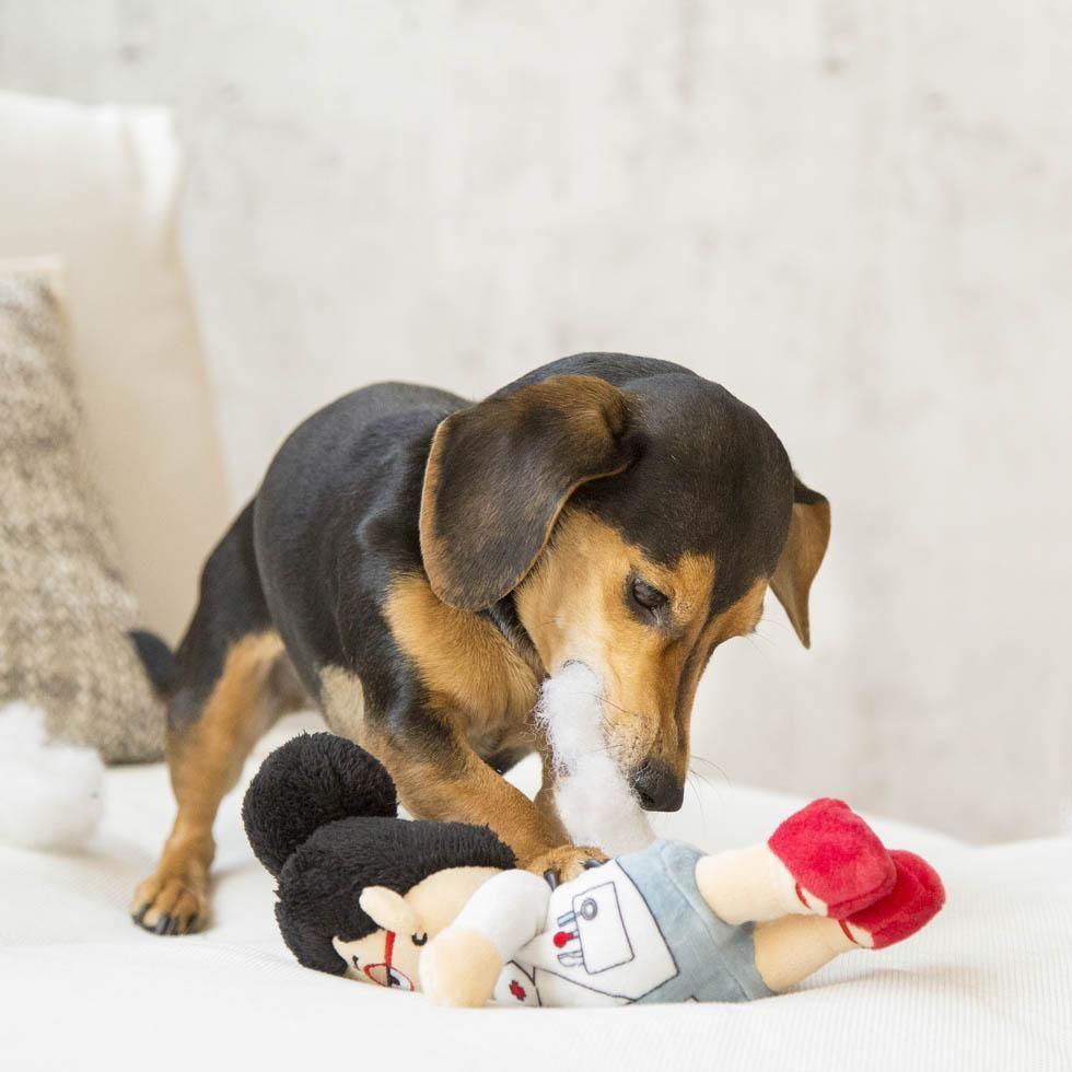 Dr Vivian Van De Fluff Funny Dog Toys Dog Toys Dogs