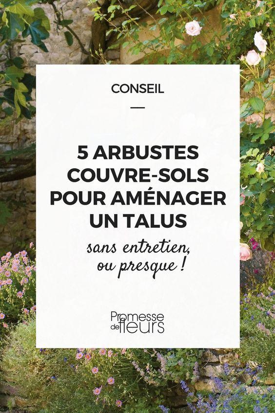5 arbustes couvre-sols pour aménager un talus | Talus, Couvre sol et ...