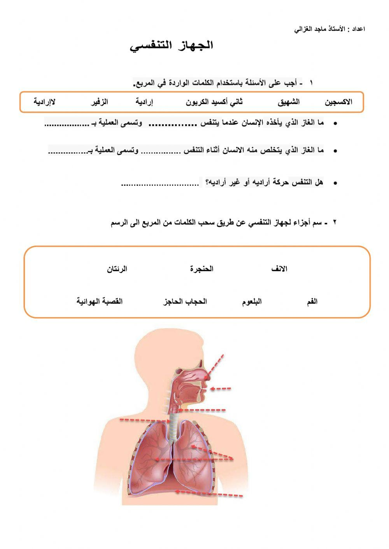 Pin By Mohsin Alriyami On School Interactive Activities School Subjects Workbook