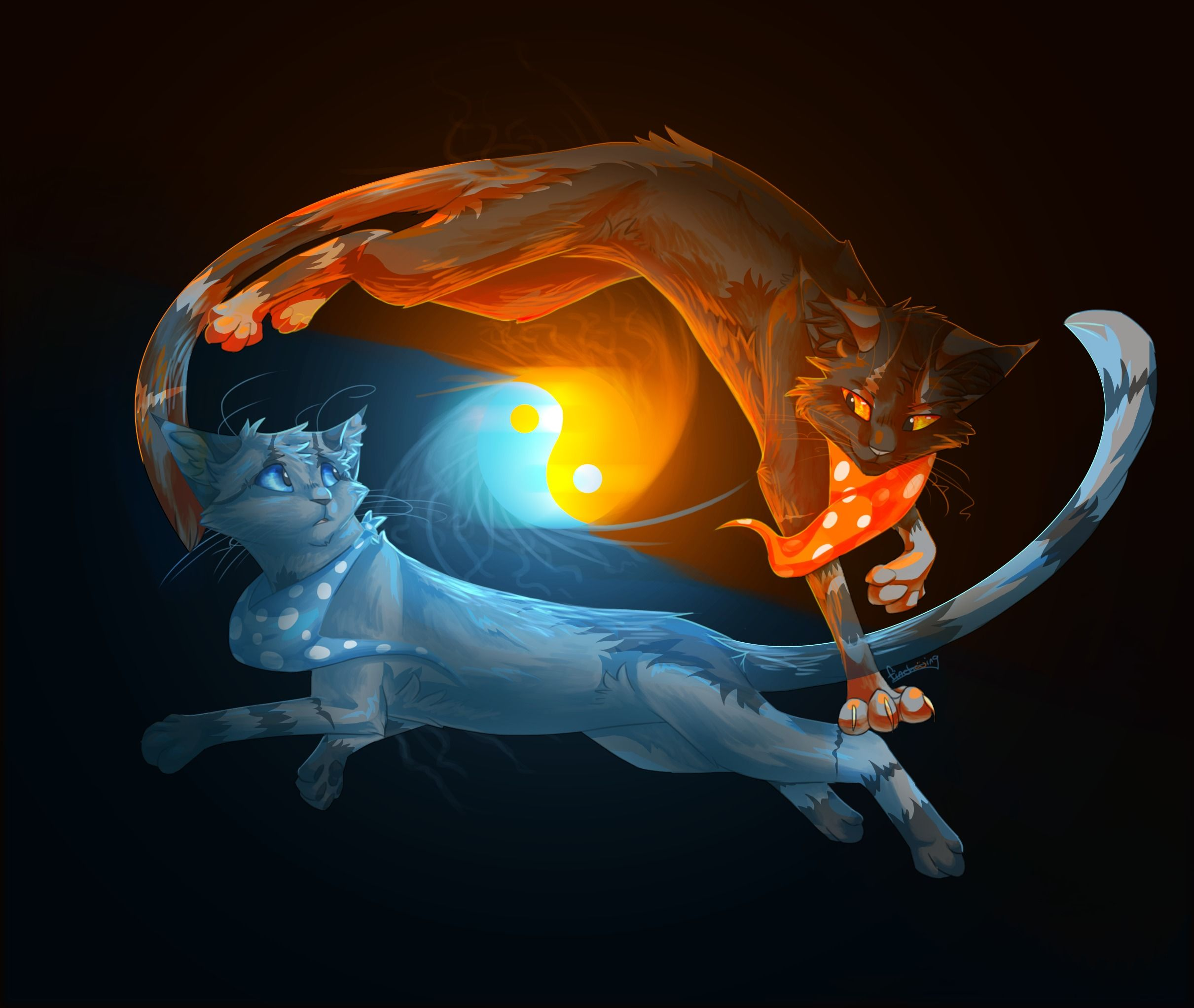 2 Fire Cats Animals, cats, yinyang, fire, water, black