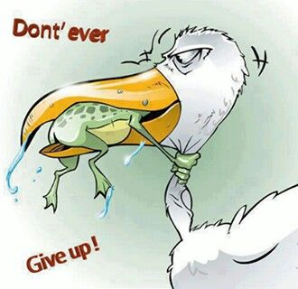I care    dont give up