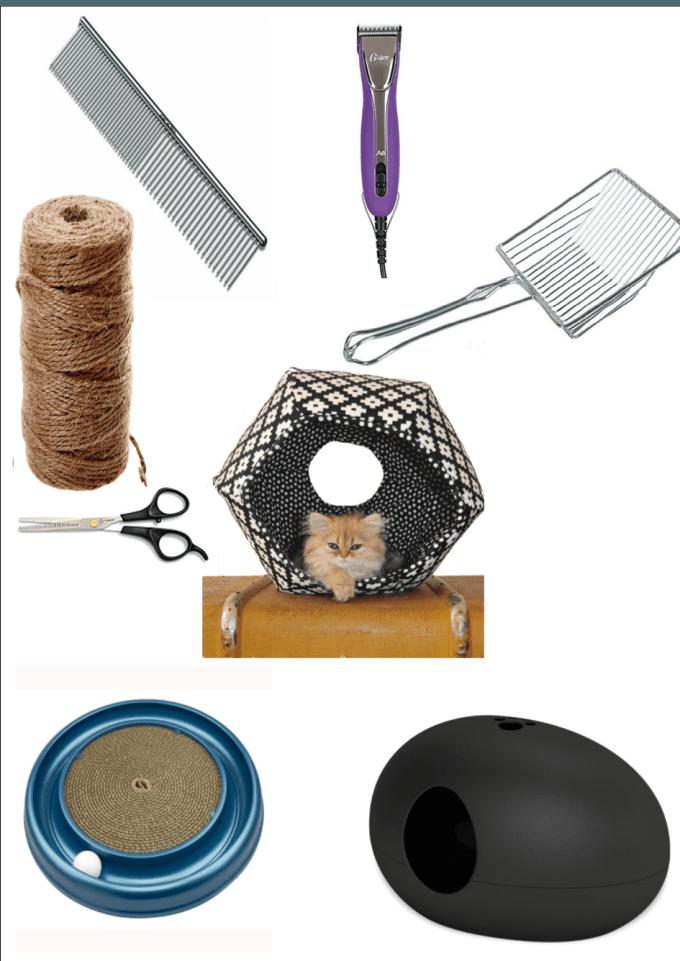 Favorite Cat Products Cats, cucumbers, Cat accessories