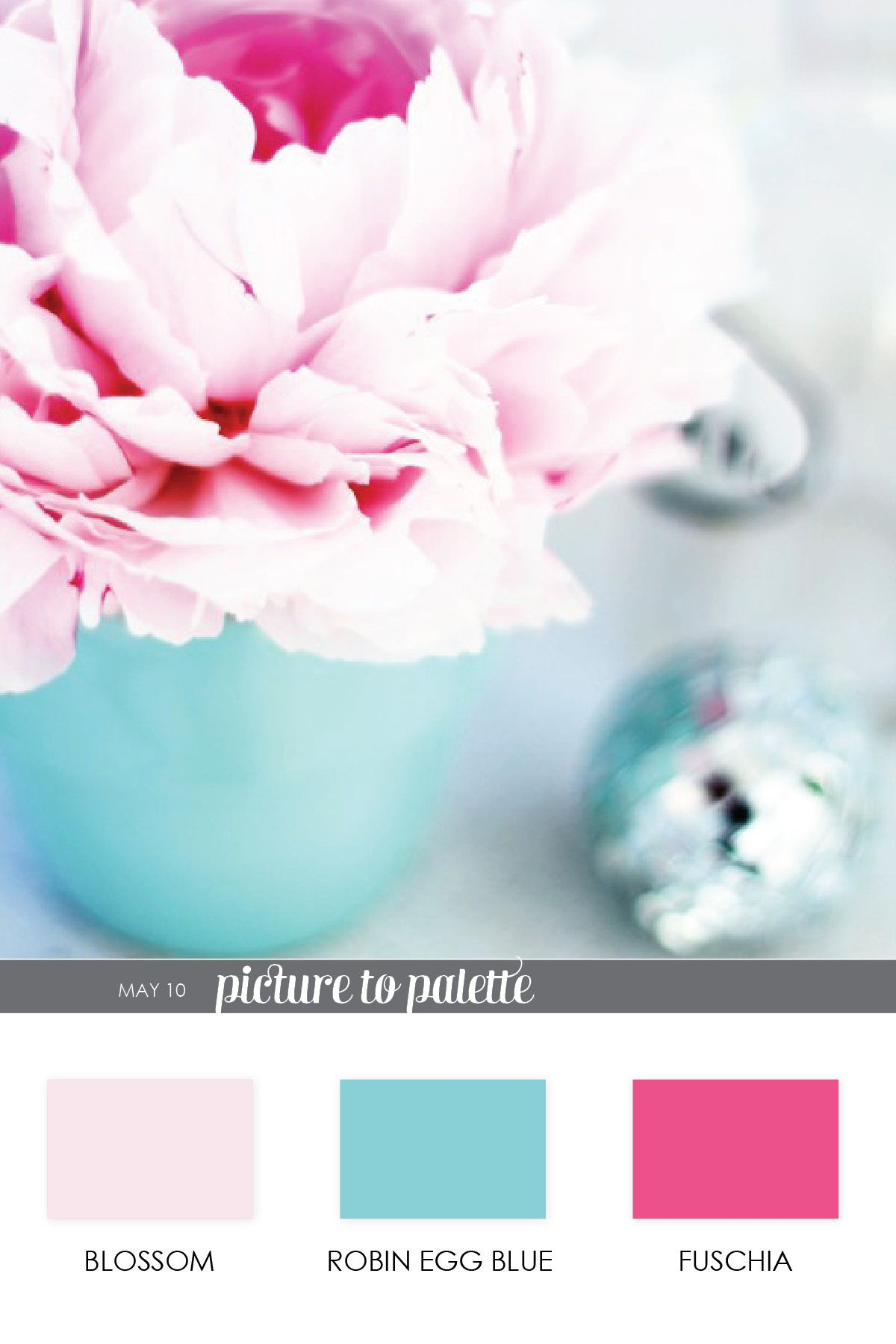 Robins Egg Blue Blossom And Baby Pink Great Colors For The Living Room