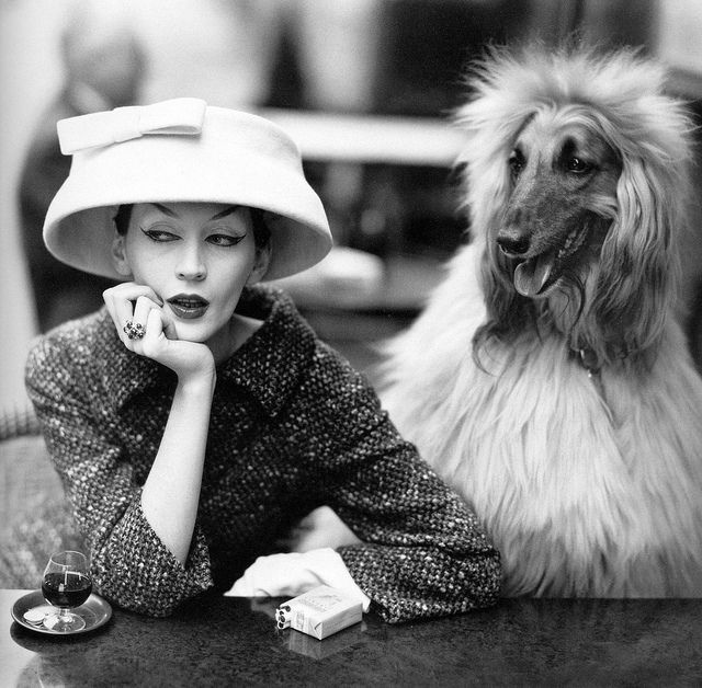 Dovima at Cafe des Deux Magots.  I've been there, too, but I didn't have a dog and nor did I look so fabulously blase.