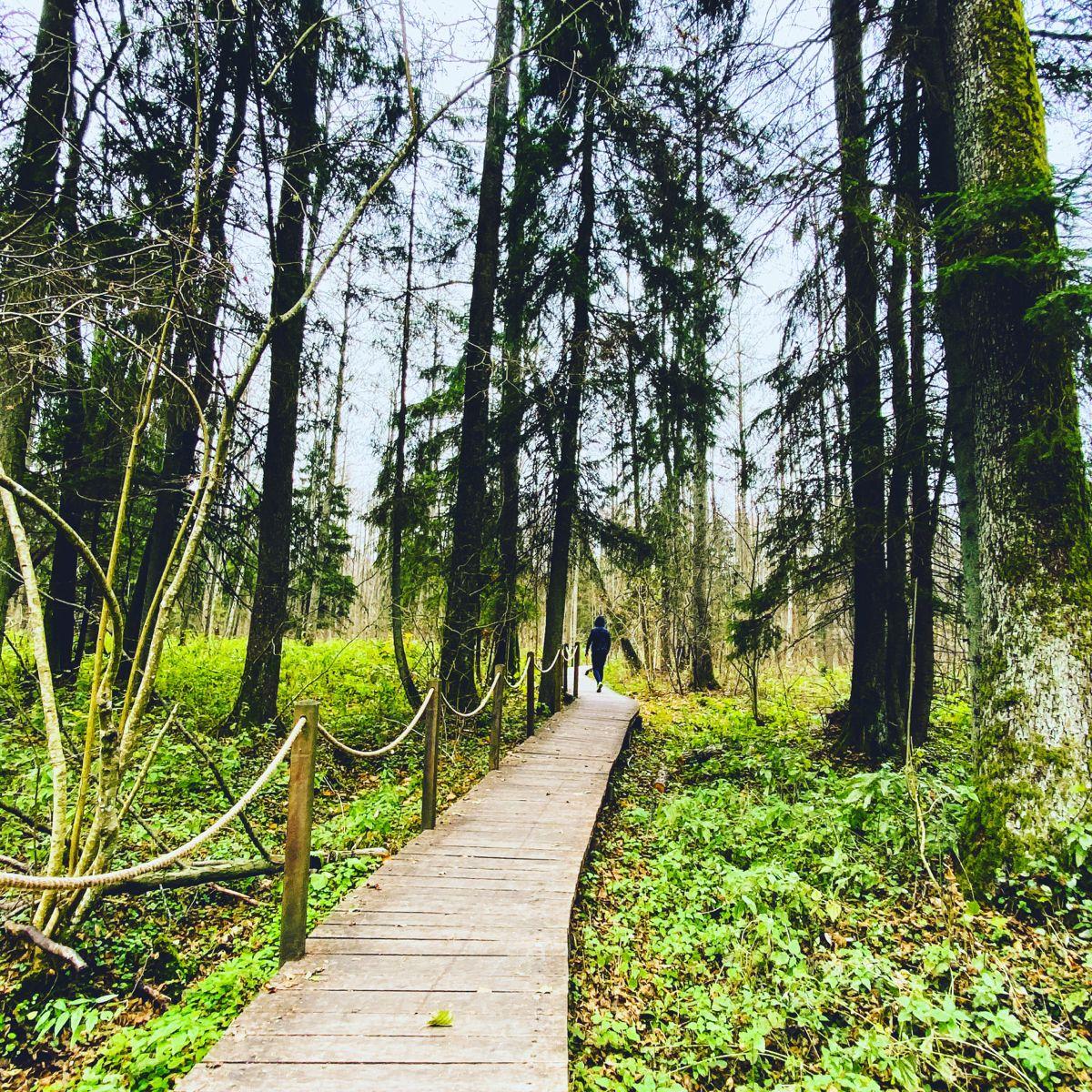 #podlasie #polandtravel #poland #travelideas #travelinspo #travelblogger #bloggingtips #weekend #polska #podróże