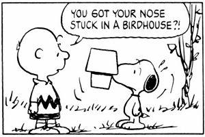 Snoopy in black & white! (310)