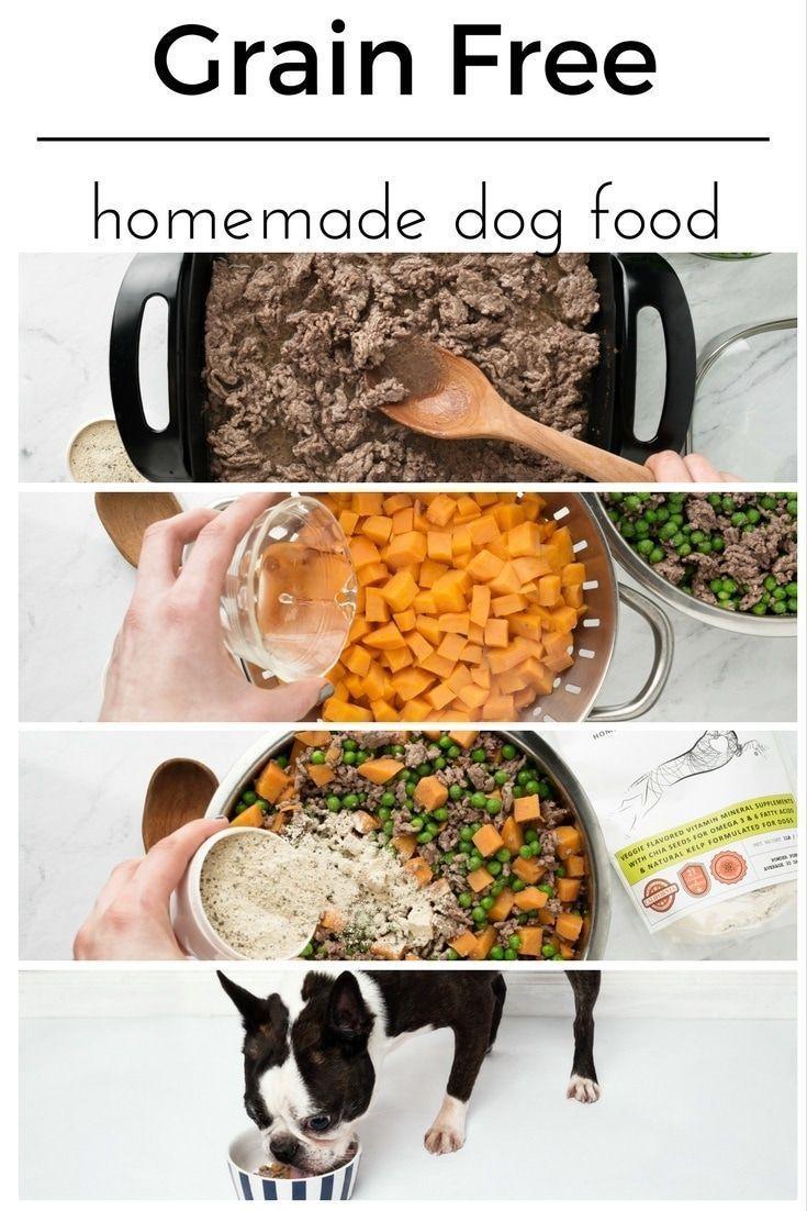 How To Make Homemade Dog Food Recipe Homemade Dog Food Dog