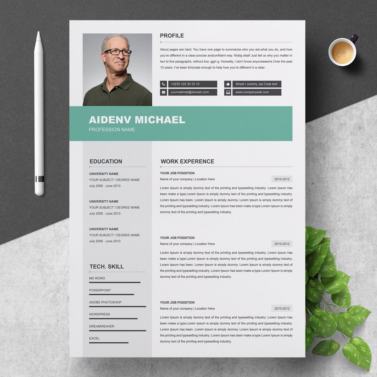 3 page professional resume template 73858 professional