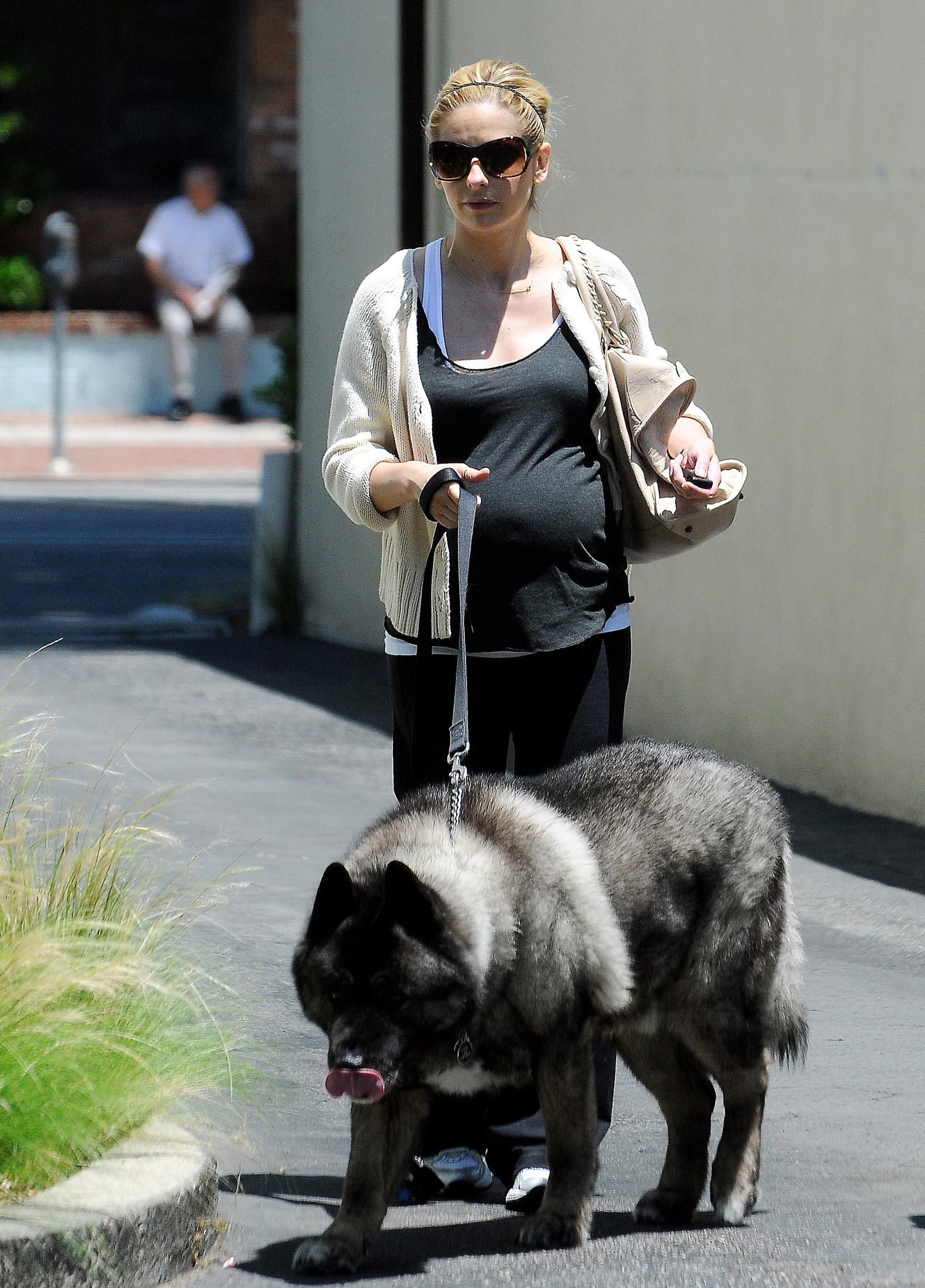 Celebrity Pups - Home