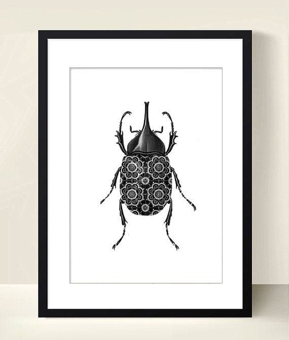 Scarabee poster insect poster digital download art collage instant download black and white print insect
