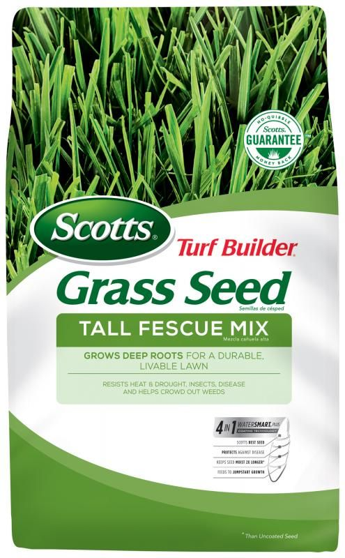 Scotts Turf Builder Grass Seed Tall Fescue Mix Scotts Grass Seed Tall Fescue Turf Builder