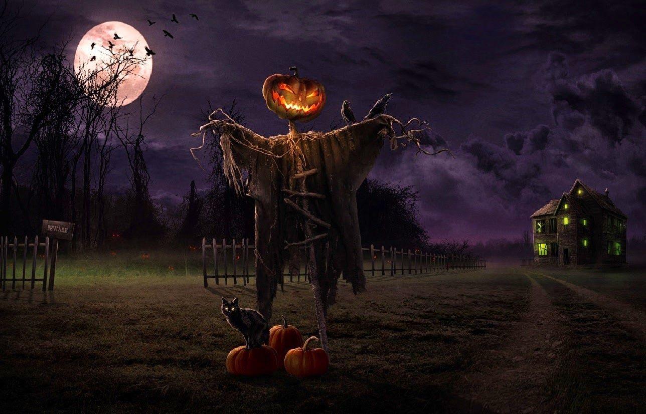 Halloween Scarecrow Halloween Scary Horror Nights Scarecrow Pumpkin Haunted House Hd Halloween Pictures Scary Halloween Images Halloween Desktop Wallpaper