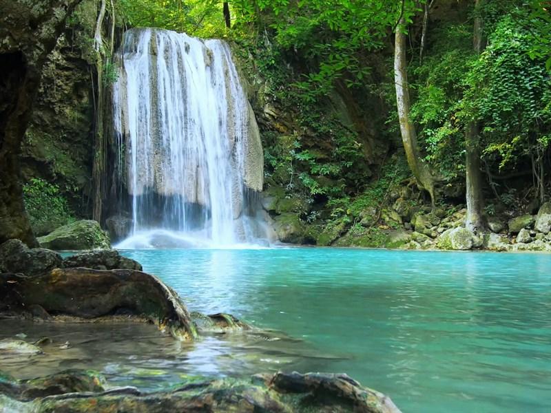 Cascade Foret Lac Bleu Le Vert Des Arbres De Belles Chutes D Eau Cascade D Eau Chute D Eau Image Eau