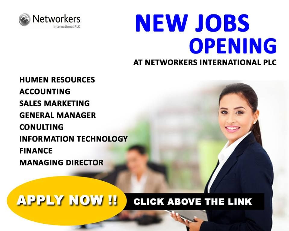 IT Careers NETWORKERS INTERNATIONAL PLC Sales and