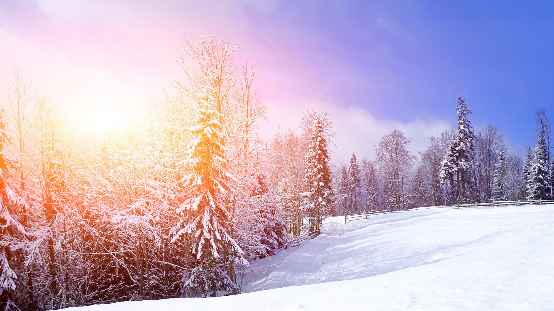 Beautiful Snowflake In The Sunlight: Mountain Sunrise Sunset Scenery