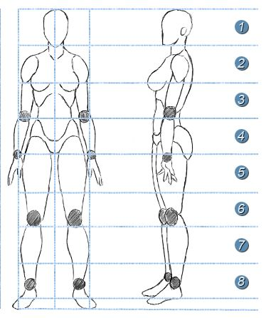 Como Dibujar Manga Proporciones Del Cuerpo 21 Proporciones Del Cuerpo Humano Como Dibujar Cuerpos Cuerpo Humano Dibujo