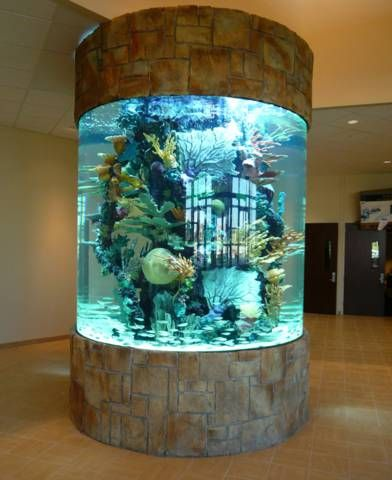 This Round Marine Aquarium Is Insane Amazing Aquariums Aquarium Decorations Aquarium Design