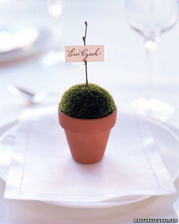 20 Tips For Throwing The Ultimate Spring Wedding Wedding Place Cards Plant Wedding Favors Seating Cards