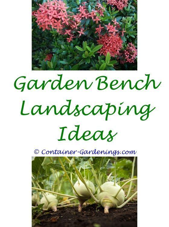 contemporary front garden ideas - gardening ideas for a small ...