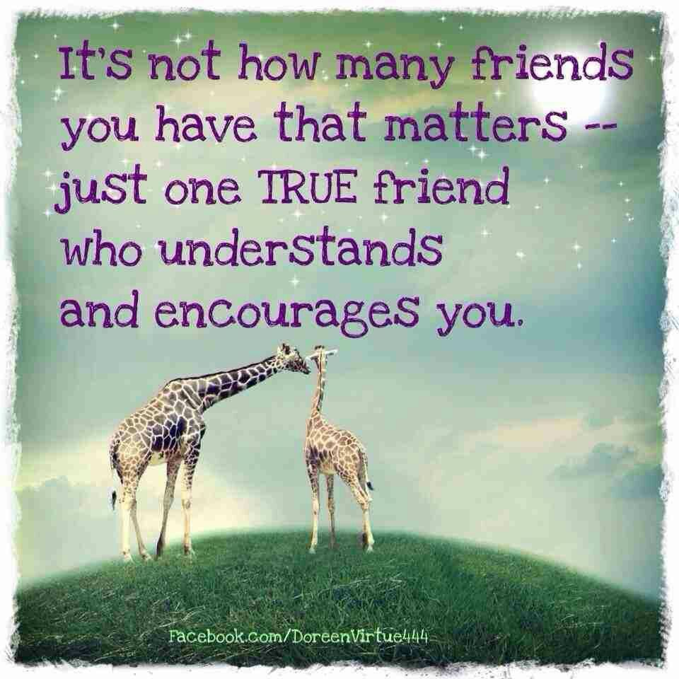 It's not how many friends you have that matter - just one true friend who understands and encourages you.