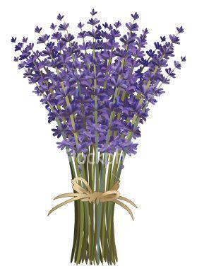 Such Beauty Vintage Flowers Lavender Bouquet Lavender