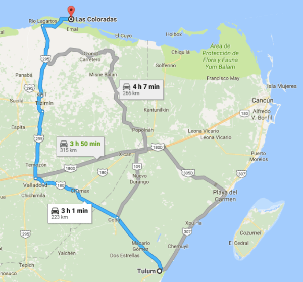Las Coloradas Mexico Map.A Road Trip To The Magical Pink Lagoon Cancun Trip Mexico