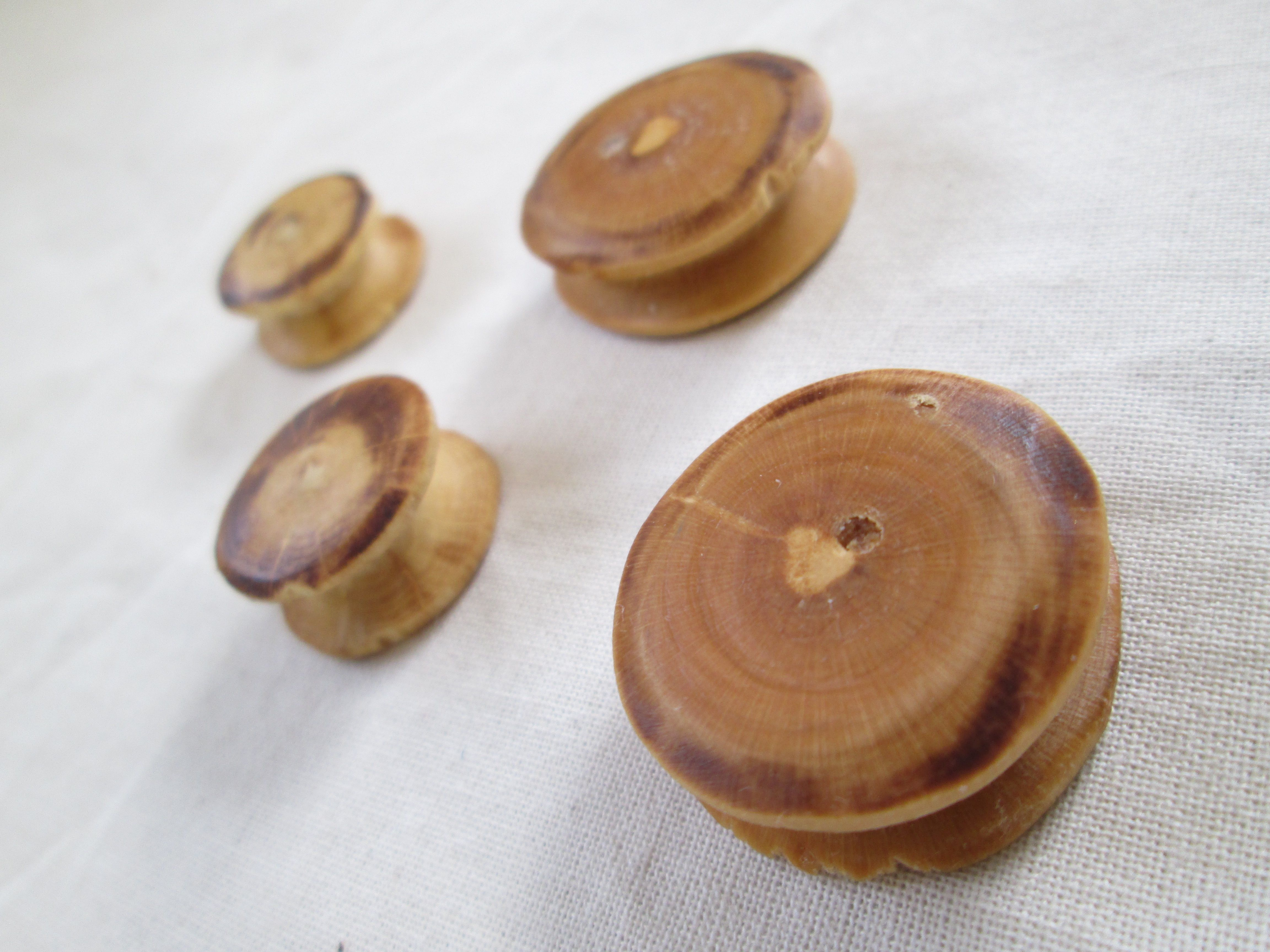 Facsimile Bronze Age wooden ear studs.