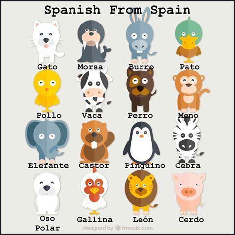 los animales | ELE:Animales | Pinterest | El animal, Animales y ...