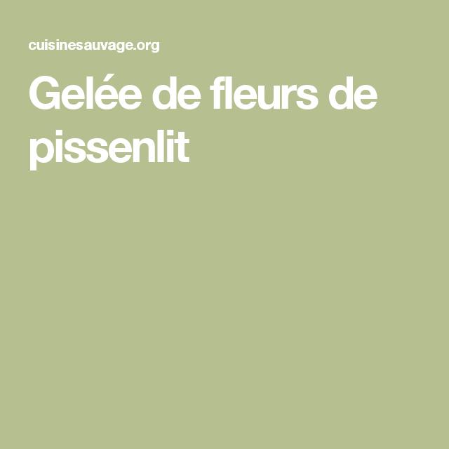 Gelée de fleurs de pissenlit