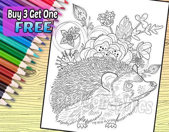 Adorable Hedgehog - Adult Coloring Book Page - Printable ...