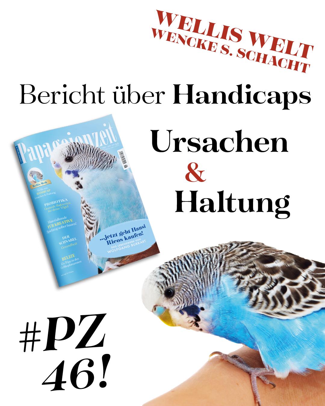 Gratis Leseprobe Unseres Print Magazins Fur Neukunden In