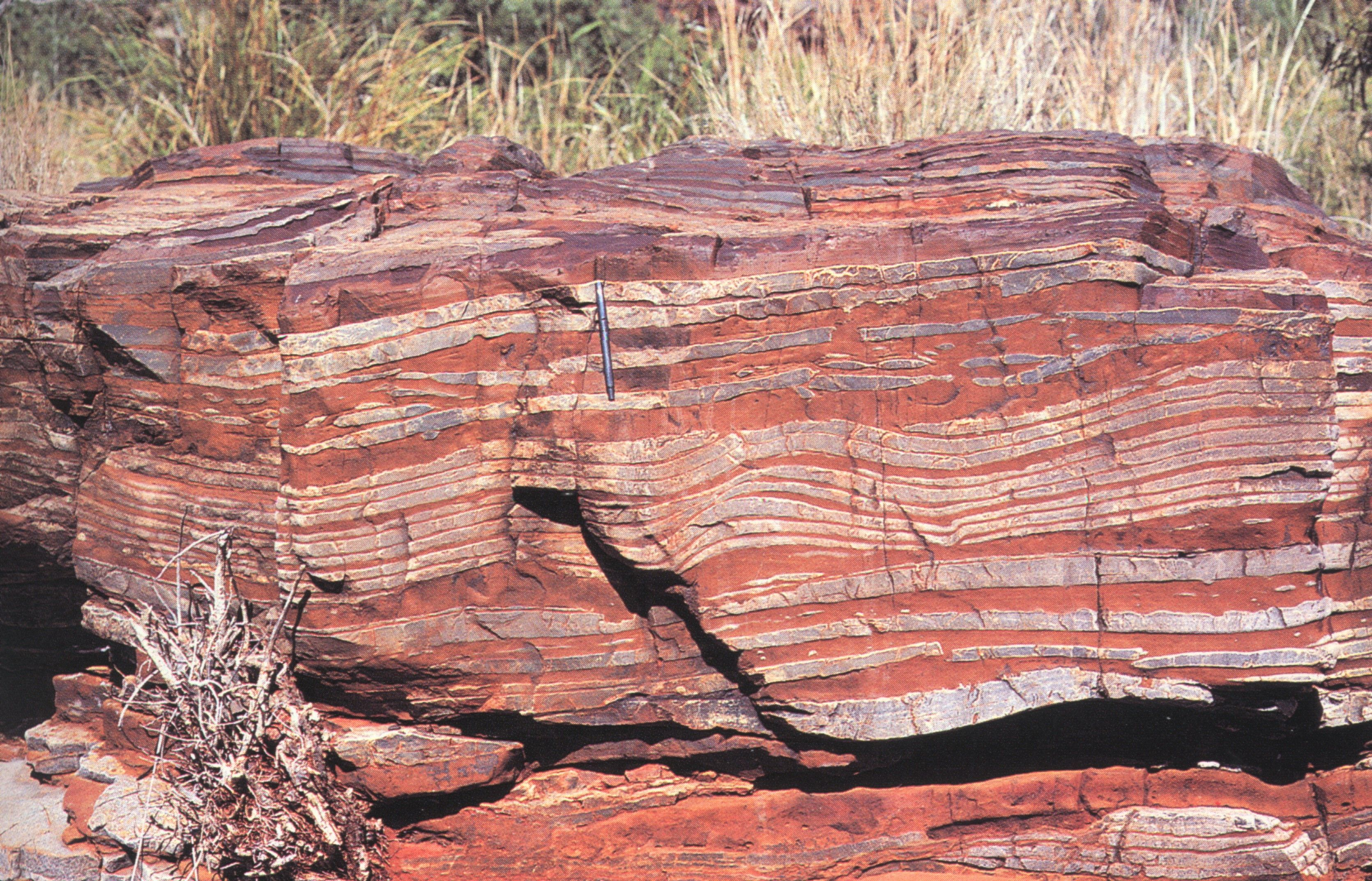 Roca perteneciente a una formación de hierro bandeado. El Fe se concentra en las bandas plateadas, mientras que en las bandas rojizas hay materiales detríticos silíceos con altos contenidos ferruginosos (que le dan ese color). Autor: desconocido.  Se han propuesto diversos modelos para explicar la génesis de estas rocas:  Origen biológico: Este modelo es uno de los más aceptados internacionalmente, y supone que las bacterias fotosintéticas fueron muy importantes para la génesis de las…