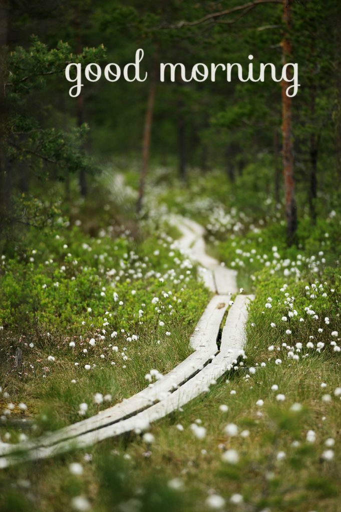 Happy Birthday Wishes With Images Scenery Nature Finland