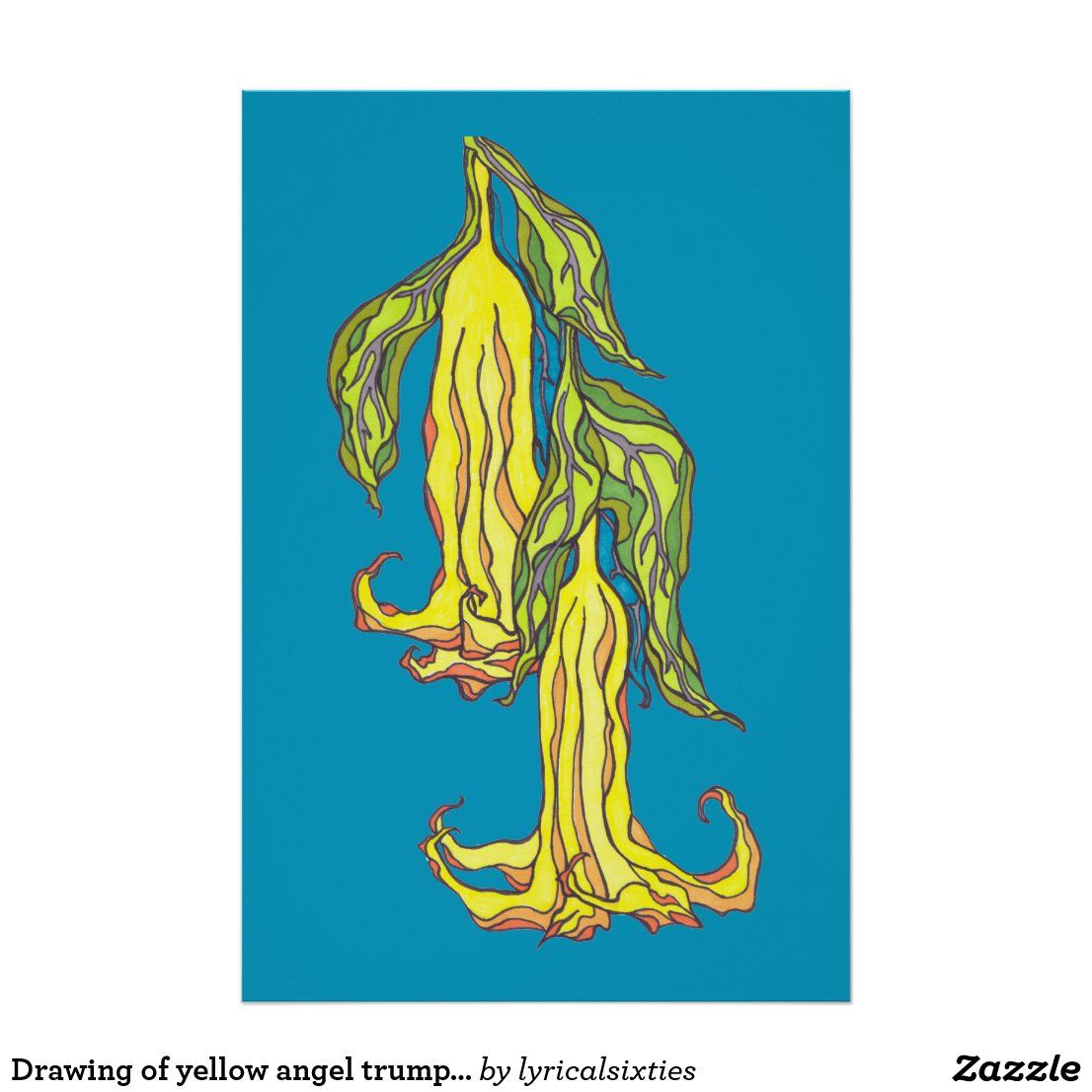 Drawing of yellow angel trumpet flowers, teal blue poster