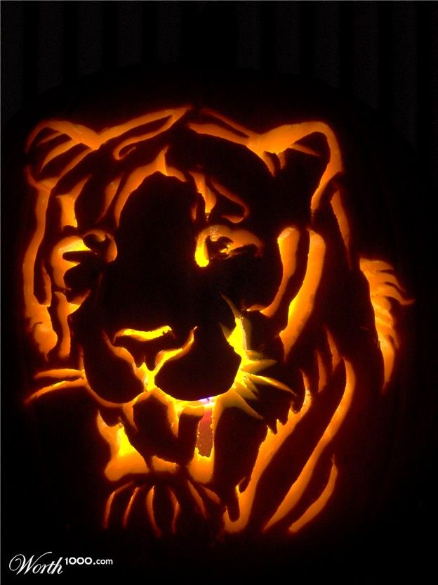 photograph free picture of a tiger pumpkin carving jacko lantern for halloween carving ideas to pattern your printable