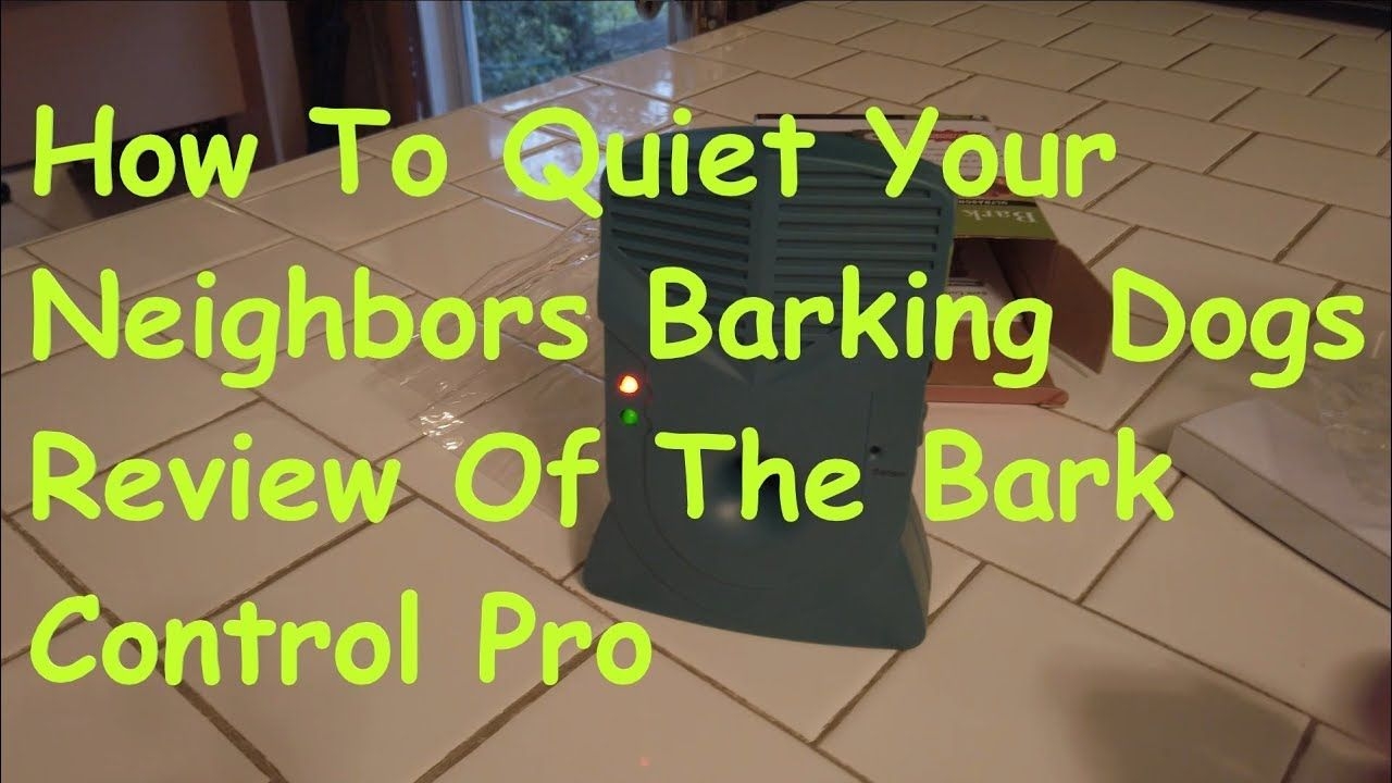 How to quiet you neighbors barking dogs review of the bark