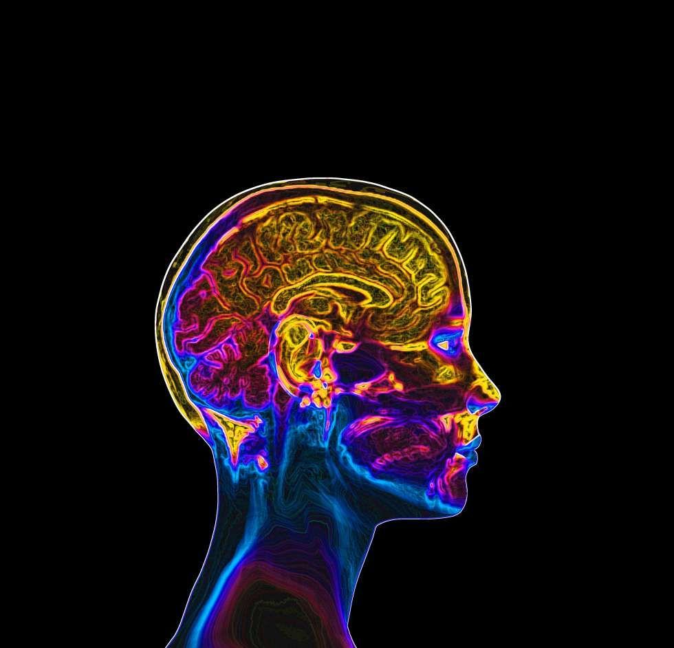 Willkommen in der Matrix: Bald können wir Wissen in unser Gehirn ...