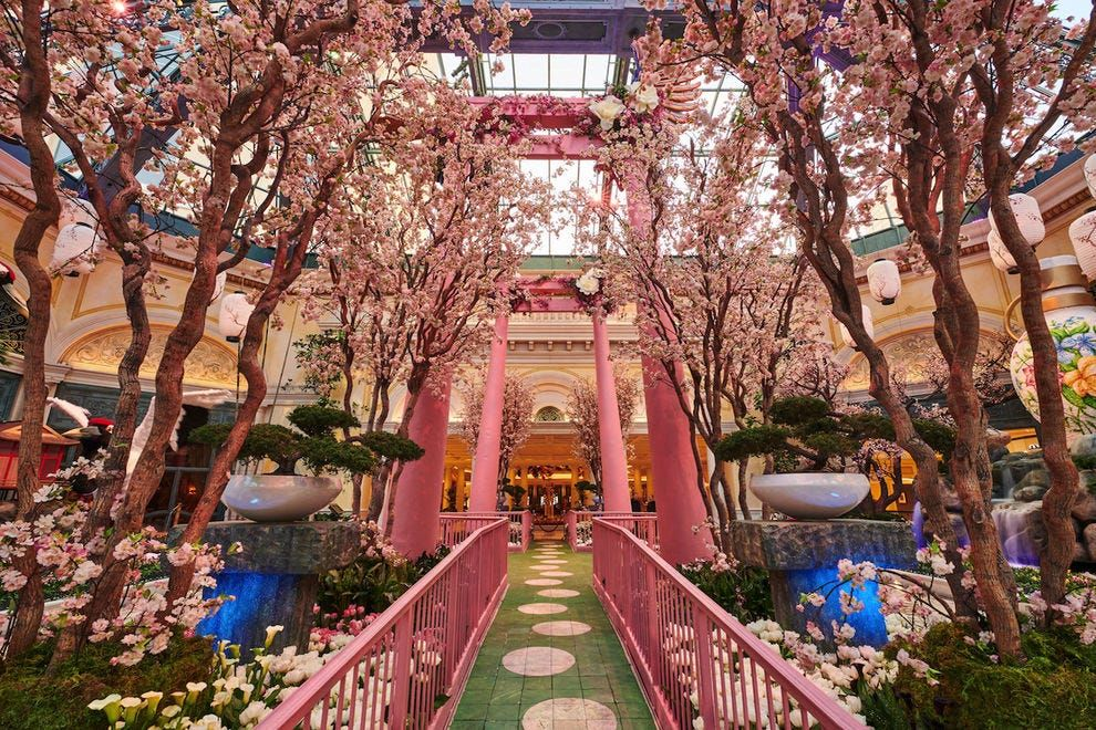 How the Bellagio makes its beautiful gardens so magical