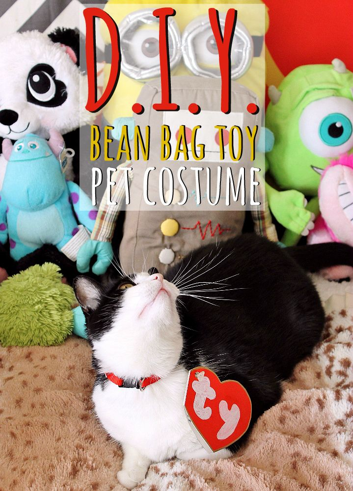 Adorable D.I.Y. Pet Costume Tutorial + All The Hershey's
