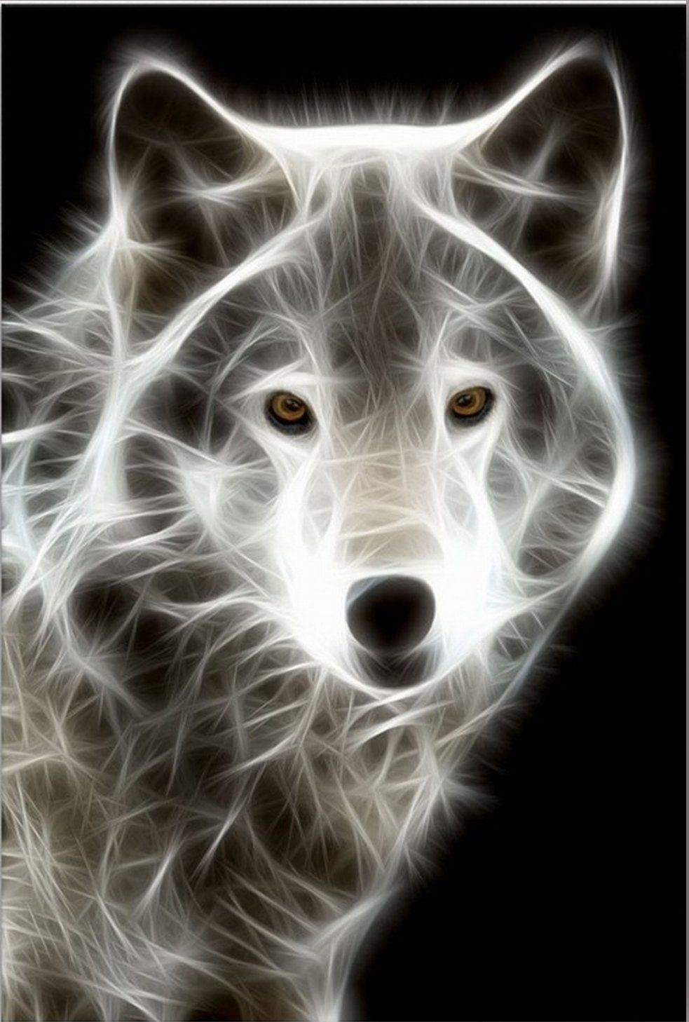 Startonight, nachtleuchtendes Leinwandbild, weiße Wolf, fertig gerahmt 60 cm x 40 cm